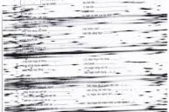 Bản in có những chấm nhỏ hoặc vệt đen to, đậm ngang trang giấy
